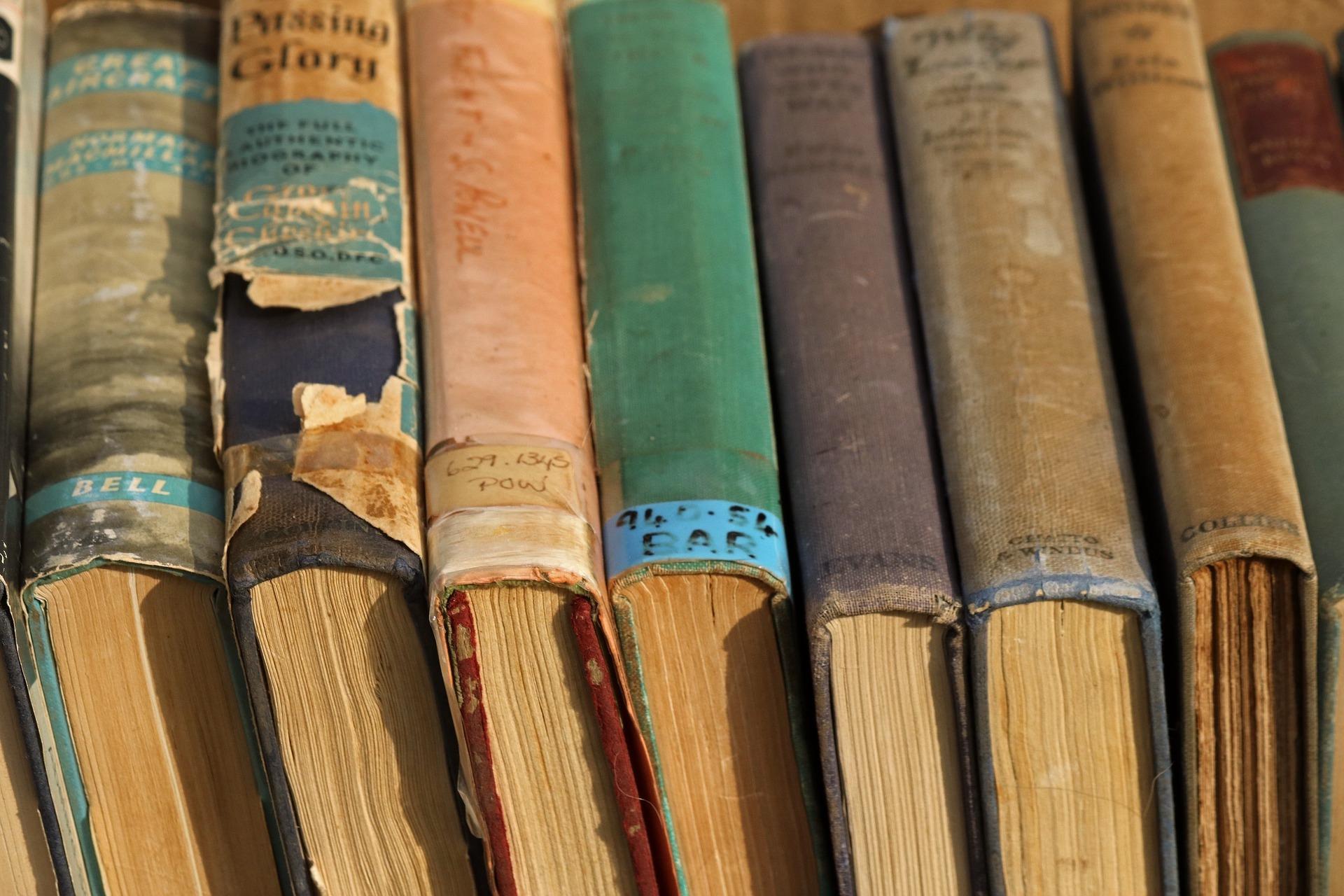Enseigner la poésie dans une dimension plurilingue et interculturelle. Quelques pistes pour un dialogue entre poésie et traduction